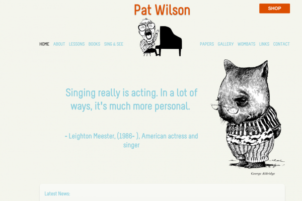 Website designed for Pat Wilson